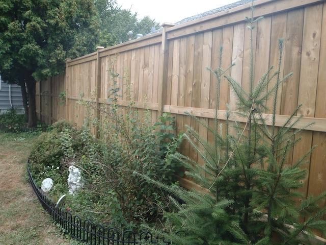 7' tall pressure treated fence