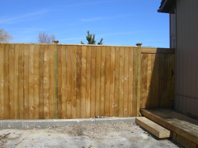 Pressure treated stained fence
